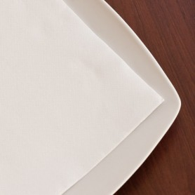 Serviettes Double Point Blanches 20x20cm - Colis de 2400