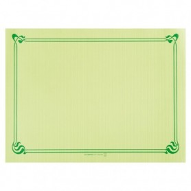 "Sets de Table ""Snack"" Vert anis 30x40cm - Colis de 2000"