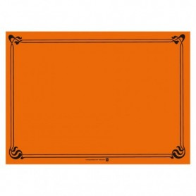 "Sets de Table ""Snack"" Orange 30x40cm - Colis de 2000"