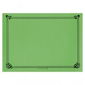 """Sets de Table """"Snack"""" Vert prairie 30x40cm - Colis de 2000"""
