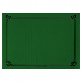 "Sets de Table ""Snack"" Vert Jaguar 30x40cm - Colis de 2000"